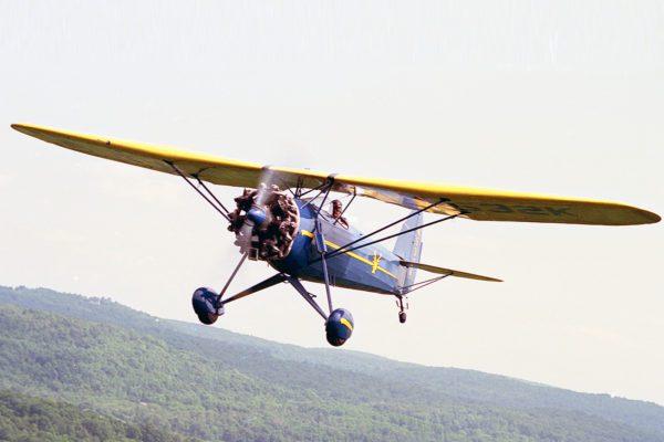 Image of Davis D1W in flight